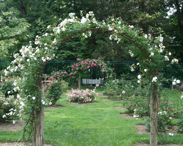 Mohegan Park Rose Garden entrance.